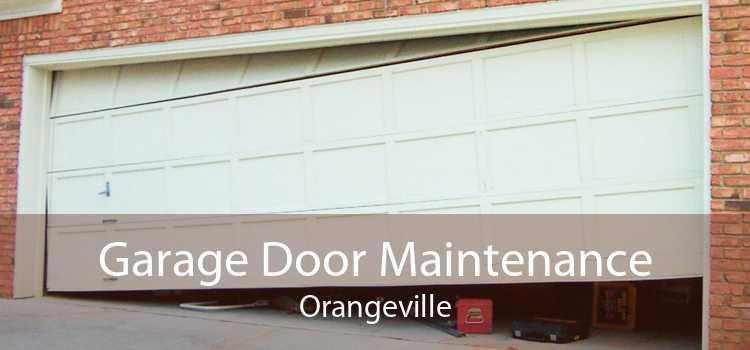 Garage Door Maintenance Orangeville