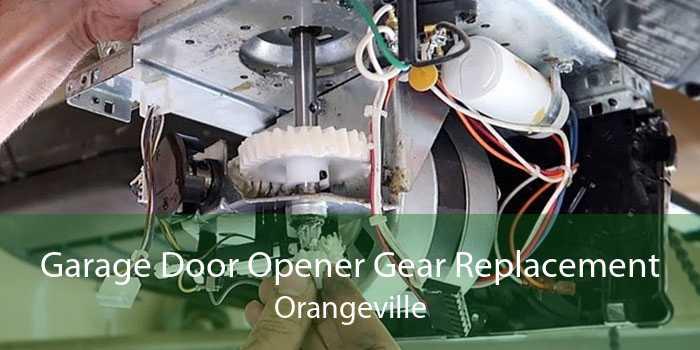 Garage Door Opener Gear Replacement Orangeville