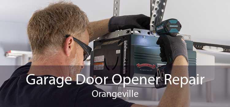 Garage Door Opener Repair Orangeville