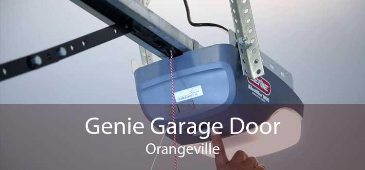 Genie Garage Door Orangeville