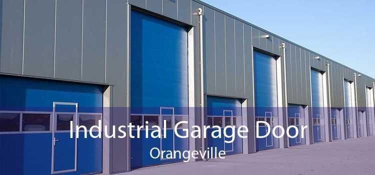 Industrial Garage Door Orangeville