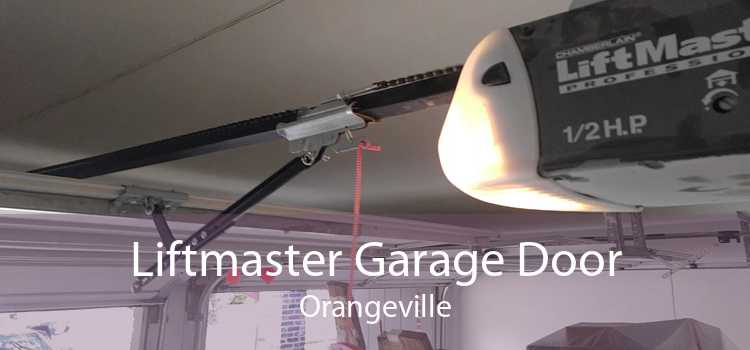 Liftmaster Garage Door Orangeville